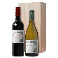 Beauté du Sud wijnen NIEUW!