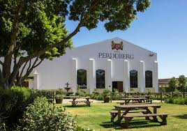 Perdeberg wijnen uit Zuid Afrika
