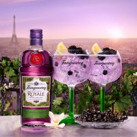Nieuw Tanqueray Blackcurrent Royale